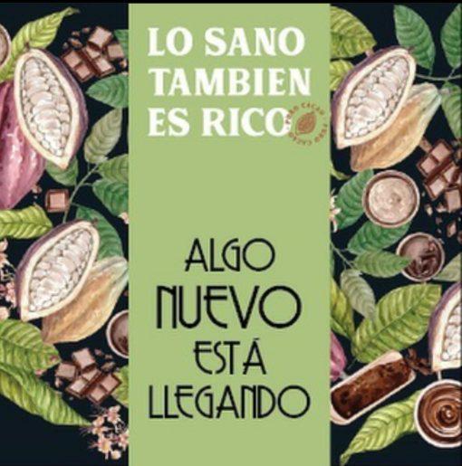Chocolate Orgánico 60% cacao chocolate Colonial 100 gr